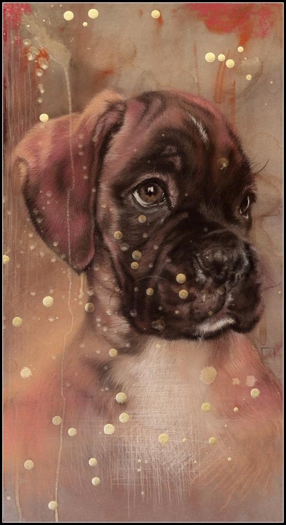 2013-hondenportret-dogportrait door jennifer koning- tekening boxer puppy Saz