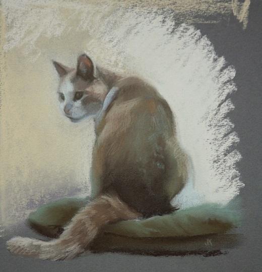pastelschets kat