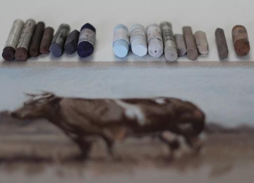 voorstudie koe in pastel