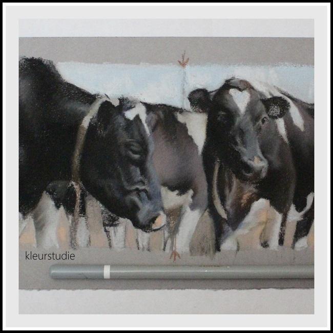2015-koning-inprogress-koeien (6)