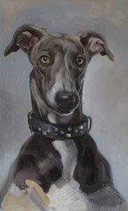 2016-hondenportret-jenniferkoning-windhond in olieverf-greyhound portrait