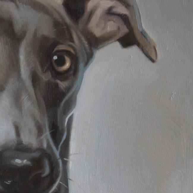 2016-hondenportret-jennifer koning- windhond in olieverf detail