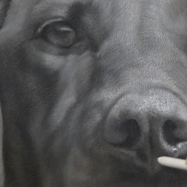het maken van een honden portret - door jennifer koning - vizsla - in uitvoering