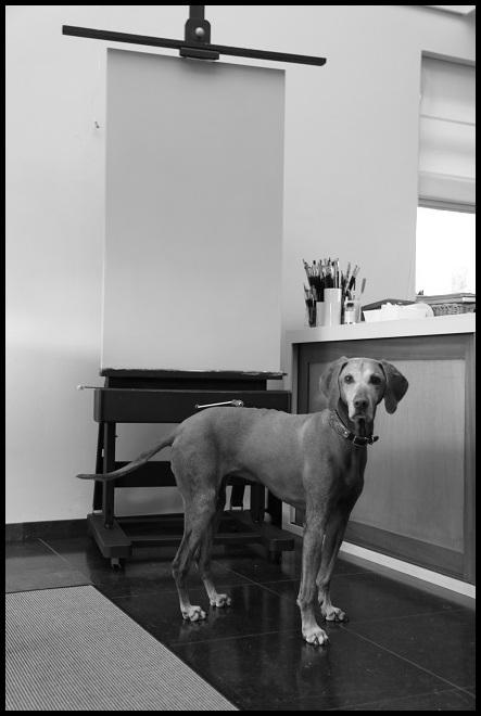 portret van een jachthond in olieverf - klaar voor de start