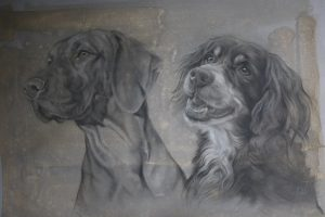 honden portret tekening - vizsla en springer spaniel - dubbelportret hond - jennifer koning