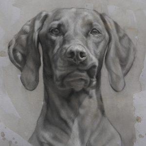kaart kunst - hond hondenkunst - vizsla - jennifer koning