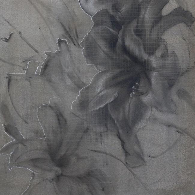 portretkunst - amaryllis in houtskool - detail portret schilder - jennifer koning