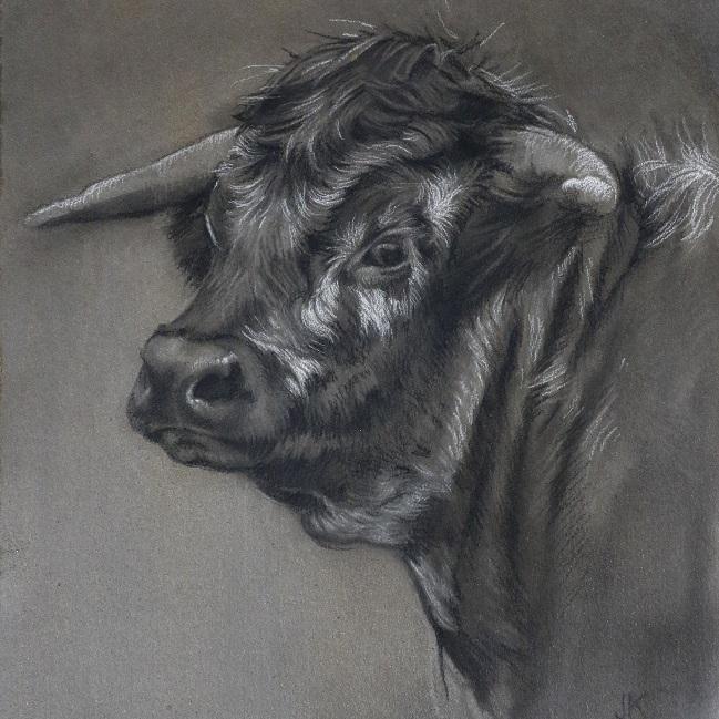 koeienportret engelse longhorn - koe kop schilderij - jennifer koning - koeienkunst