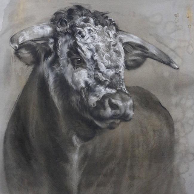 kaarten longhorn det ail stier - jennifer koning
