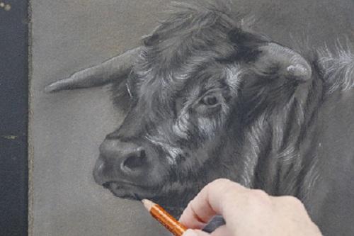 tekening in houtskool  stap voor stap - instructief - jennifer koning
