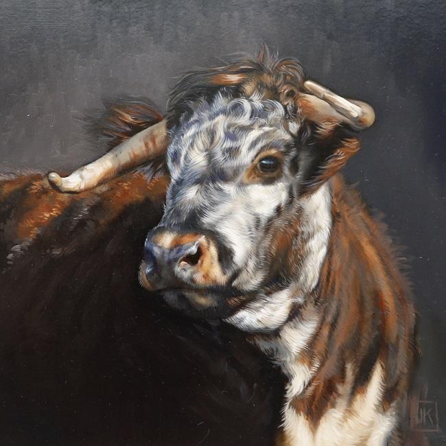 portret engelse longhorn olieverf - detail - jennifer koning