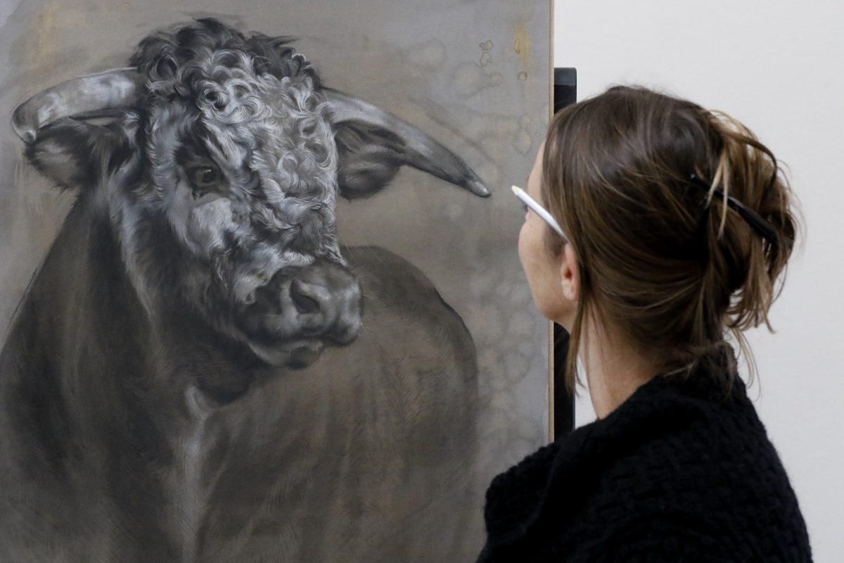jennifer koning schilderijen tekeningen - koeienkunst - bijzondere portretten