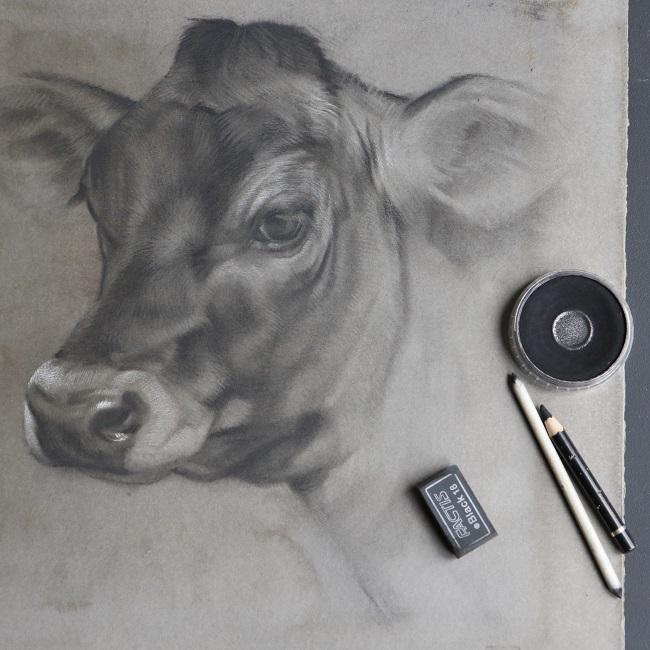 jersey anna koeien schilderij (6) tekening kalf kalfje - detail - jennifer koning