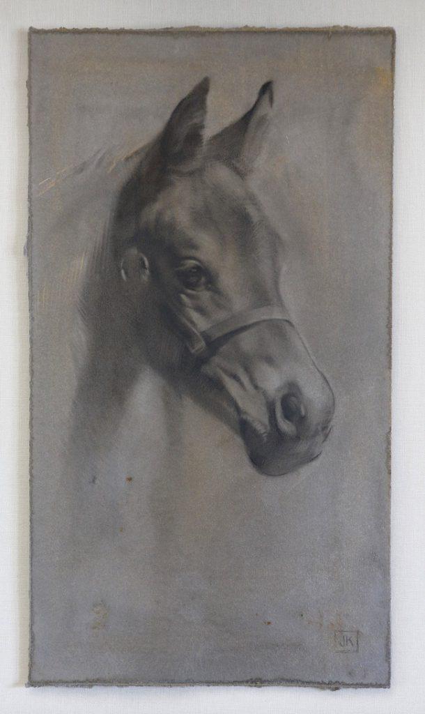 portret van een veulen - schilderij veulentje in mixed media - jennifer koning