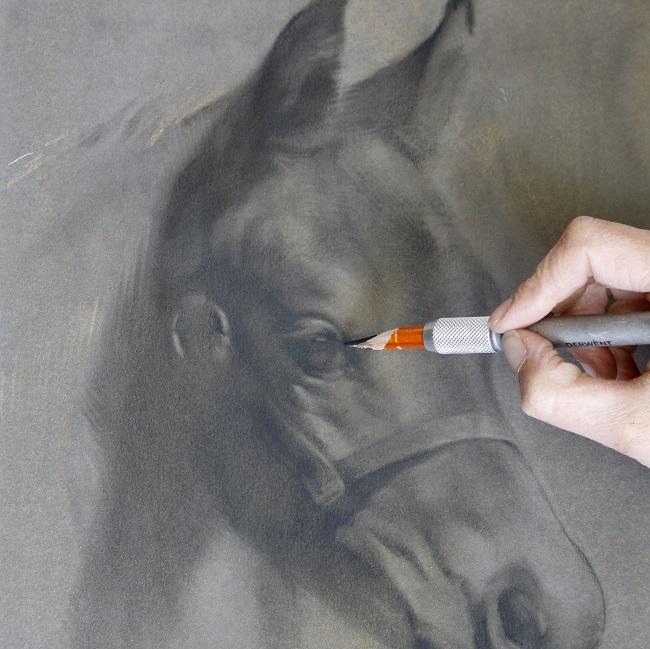 veulen schilderij in uitvoering - veulentje houtskool