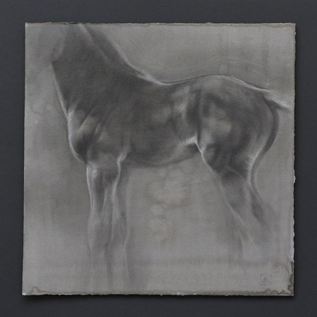 paardenkunst - portret van veulen - houtskool en mixed media veulentje - jennifer koning - odaletta