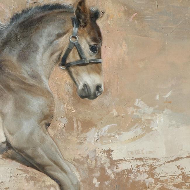 paardenportret in olieverf - play - detail - jennifer koning