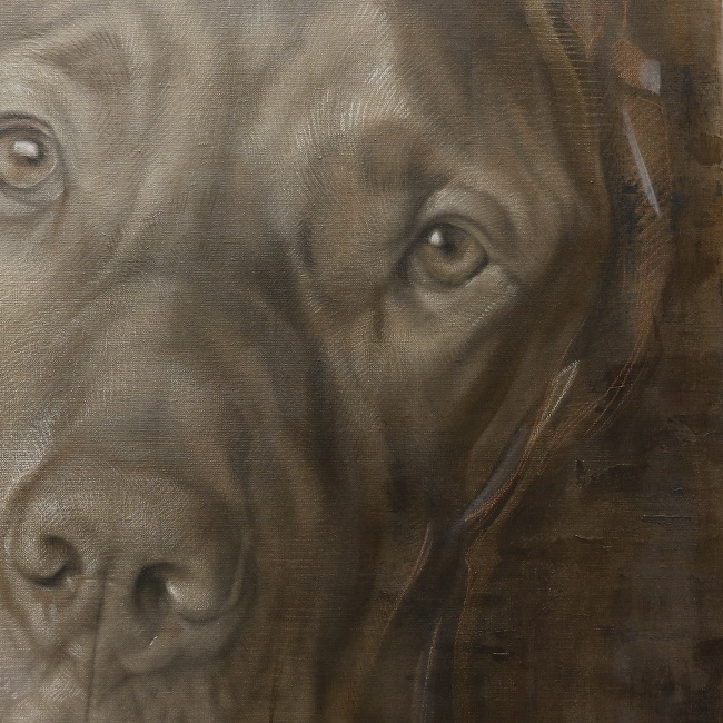 hondenportret gemengde technieken - detail