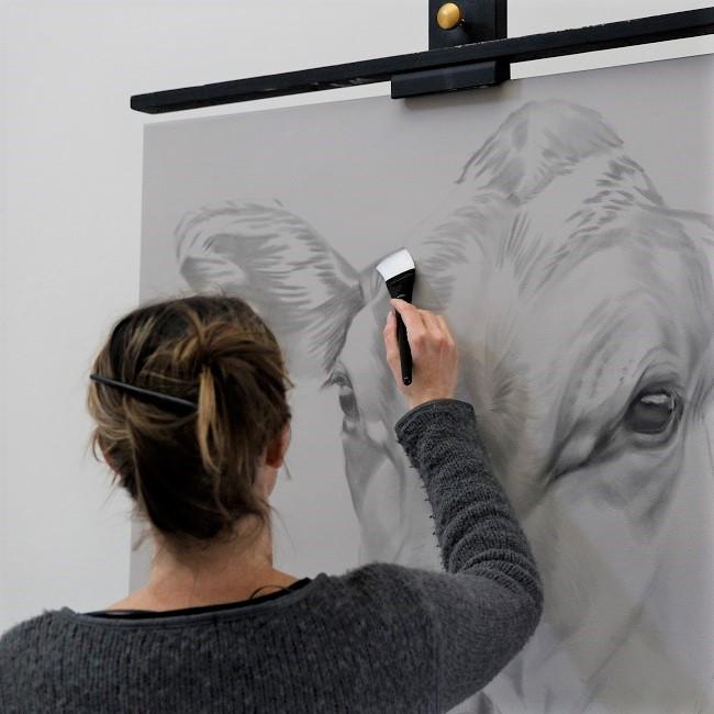 portret van koe groot formaat - werk in uitvoering - jersey
