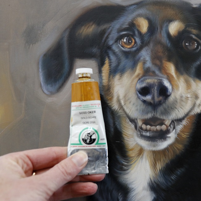 hondje in olieverf - commissioned dog portrait- detail - jennifer koning