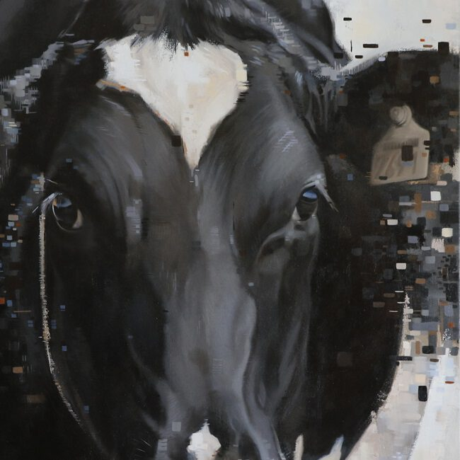 olieverf schilderij zwartbonte koe door jennifer koning (2)