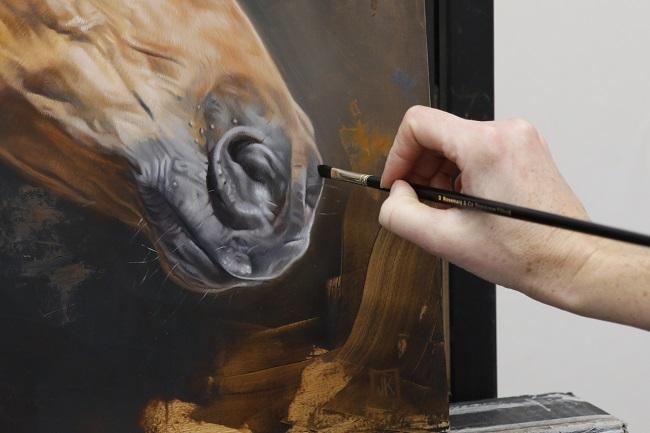 portret in olieverf van een paard door jennifer konig detail neus