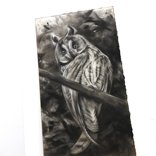 ransuil schilderij in houtskool door jennifer koning (5)