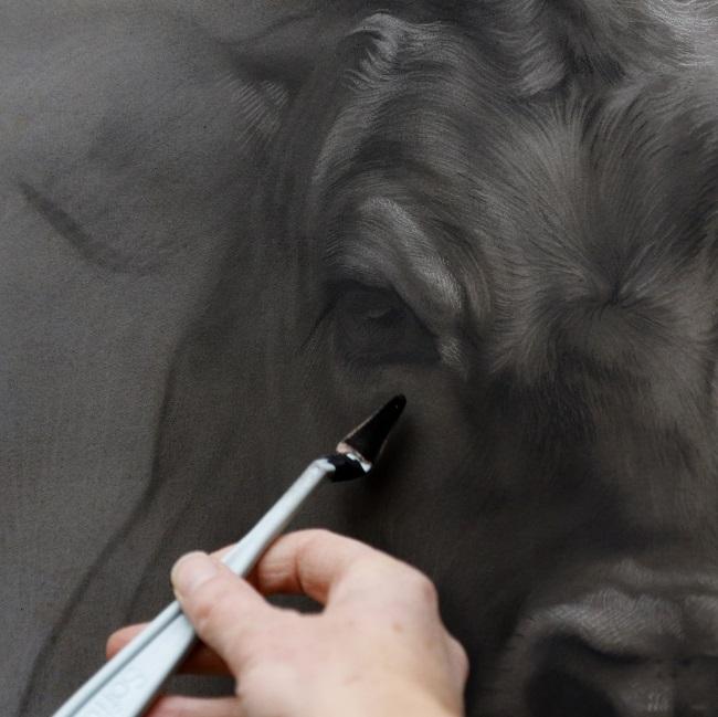 een 4e in de serie jersey koeien portretten door jennifer koning