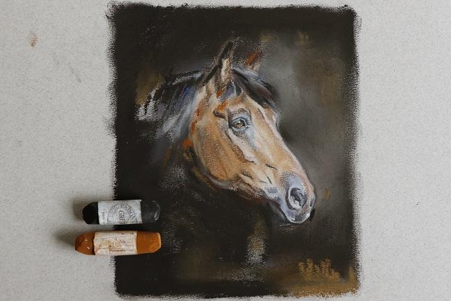 voorstudie in pastel paard voor paardenportret