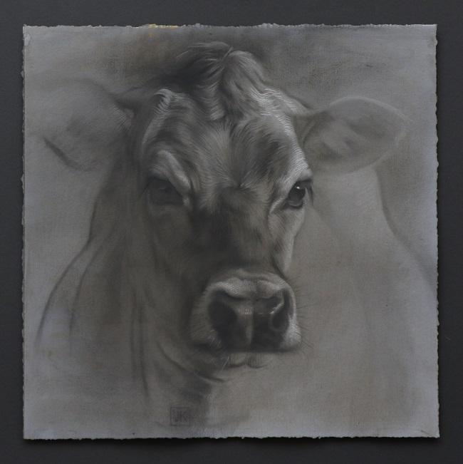 twilight jersey 4 portret koe in houtskool en mixed media door jennifer koning